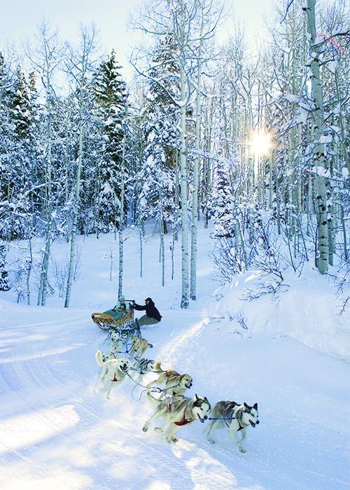 Park City, Utah, offers a winter wonderland ideal for dog sledding.