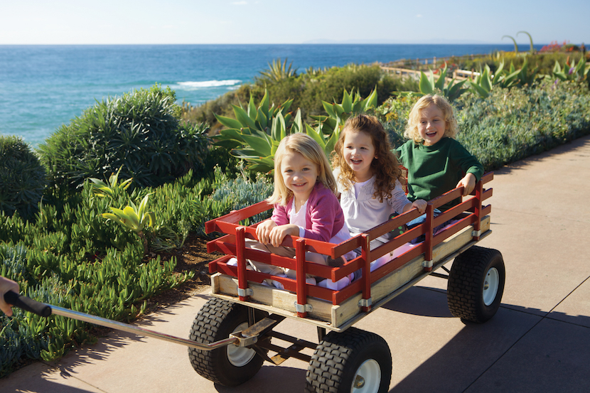 MLB-Lifestyle-Paintbox-Kids in Wagon
