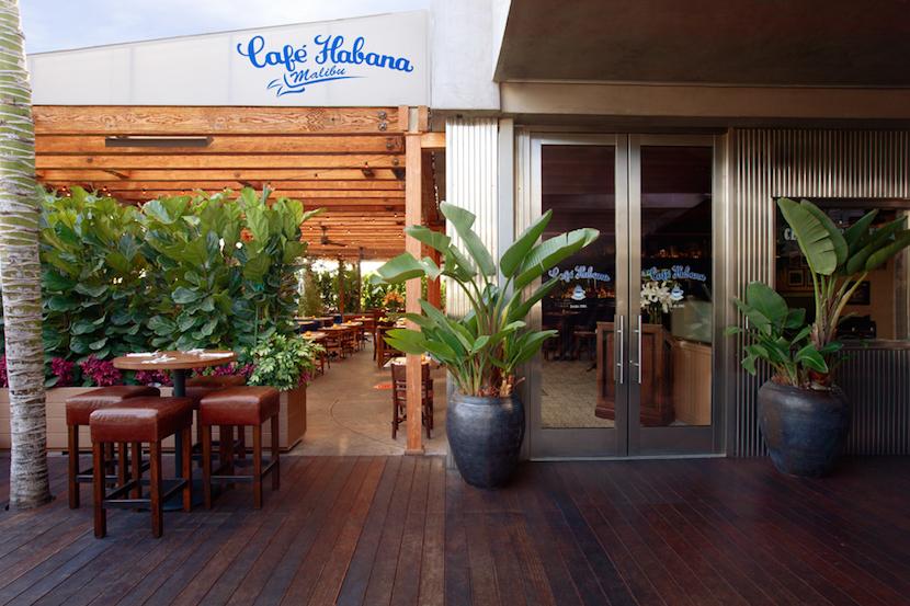 CAfe Habana 2